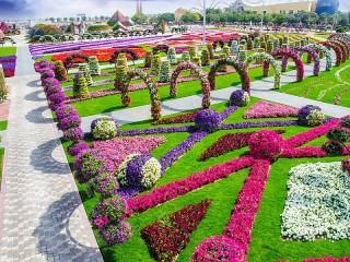 Собирать пазл Цветочный парк онлайн