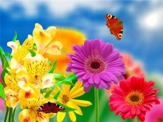 Собирать пазл Цветочное изобилие онлайн