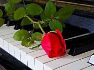 Собирать пазл Цветок на пианино онлайн