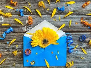 Собирать пазл Цветок в конверте онлайн