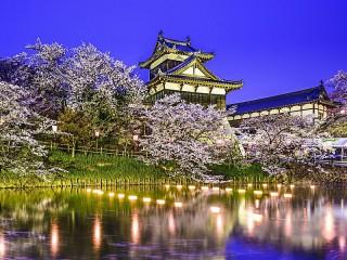 Собирать пазл Цветущая сакура в Японии онлайн