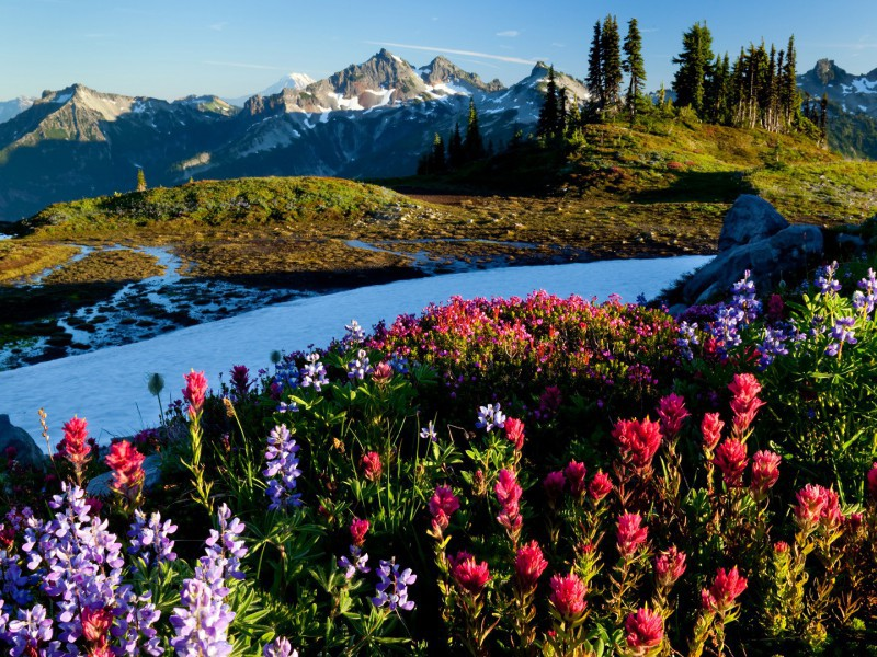 Пазл Собирать пазлы онлайн - Зима-лето в горах