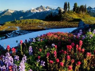 Собирать пазл Зима-лето в горах онлайн