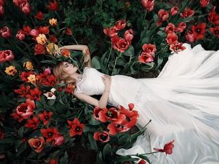 Собирать пазл Тюльпаны и невеста онлайн