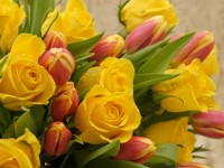 Собирать пазл Тюльпаны и розы онлайн