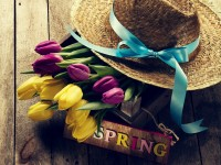 Собирать пазл Тюльпаны и шляпа онлайн
