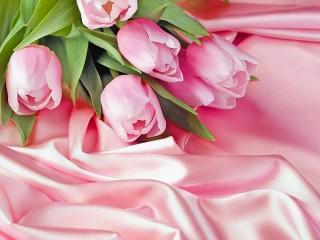 Собирать пазл Тюльпаны и ткань онлайн
