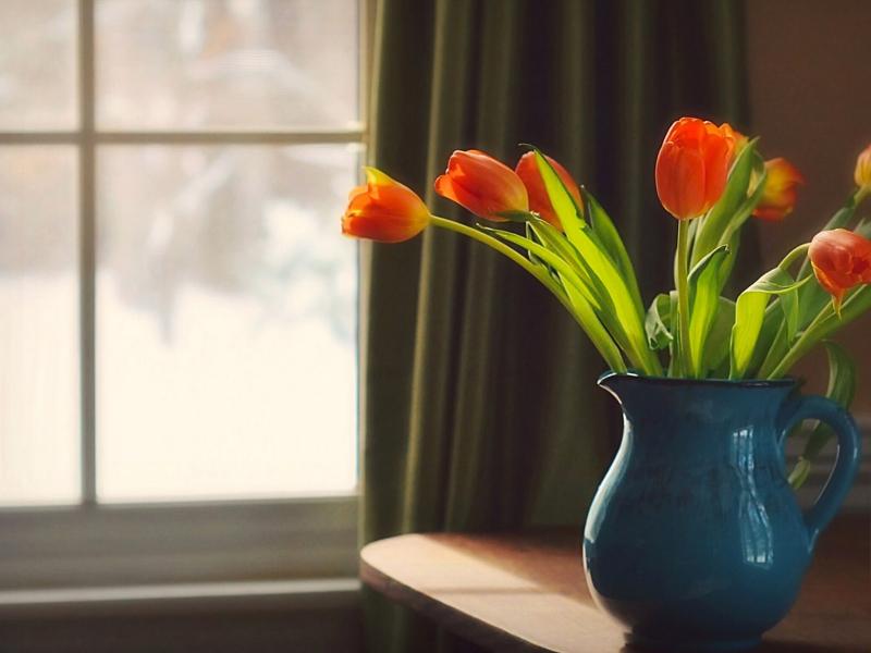 Пазл Собирать пазлы онлайн - Тюльпаны у окна