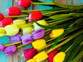 Собирать пазл Тюльпаны в букете онлайн