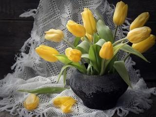 Собирать пазл Тюльпаны в чугунке онлайн