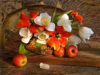 Собирать пазл Тюльпаны в корзине онлайн