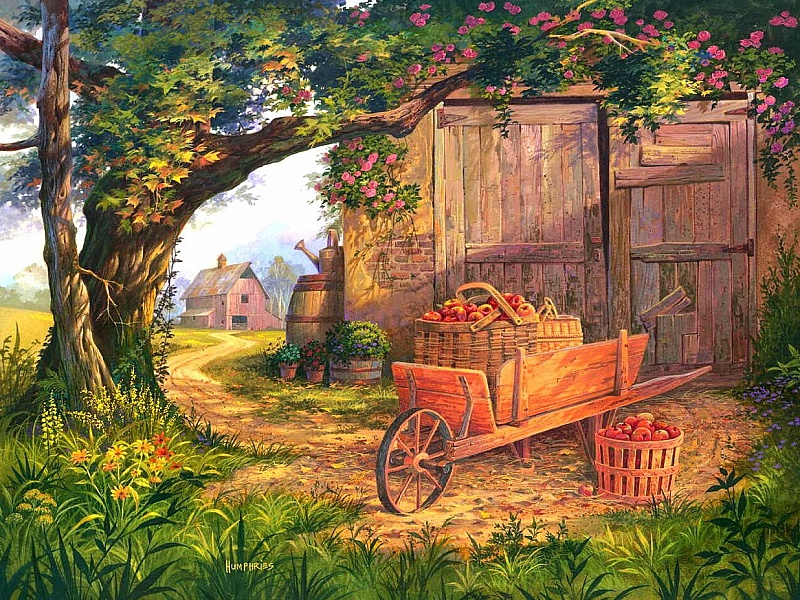 Пазл Собирать пазлы онлайн - Урожай яблок