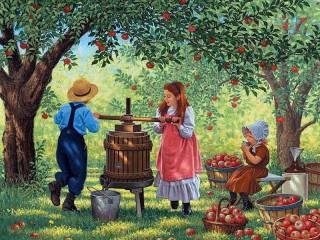 Собирать пазл Урожай яблок онлайн