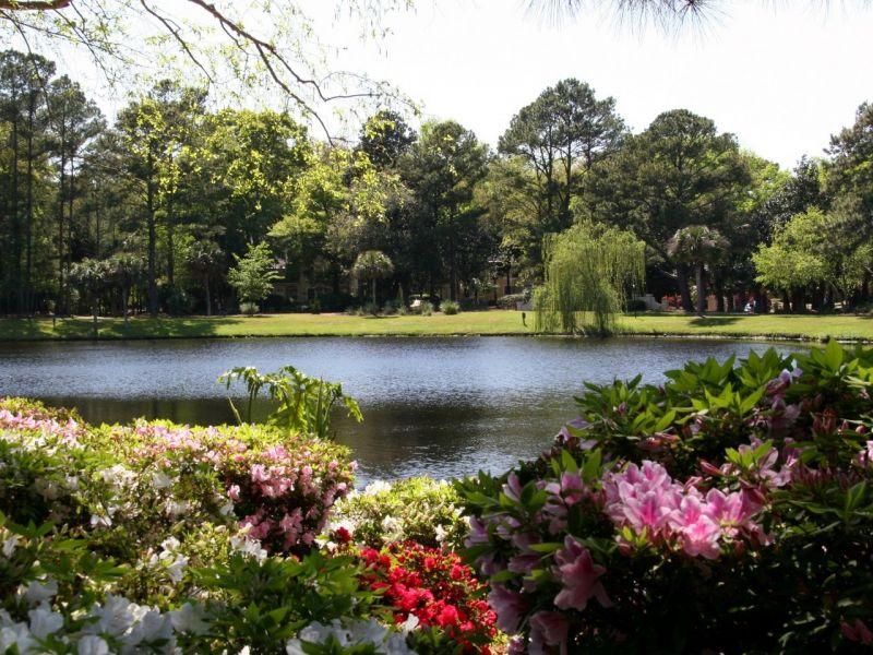 Пазл Собирать пазлы онлайн - Парк в США