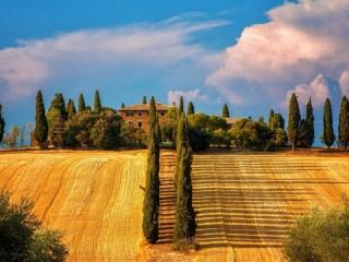 Собирать пазл Усадьба в Тоскане онлайн