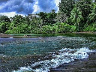 Собирать пазл Устье реки онлайн