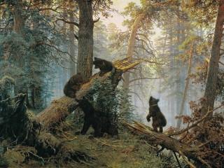 Собирать пазл Утро в сосновом лесу онлайн