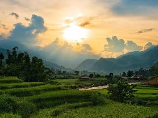Собирать пазл Утро Вьетнама онлайн