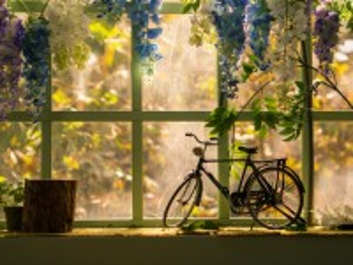 Собирать пазл В гостях у лета онлайн
