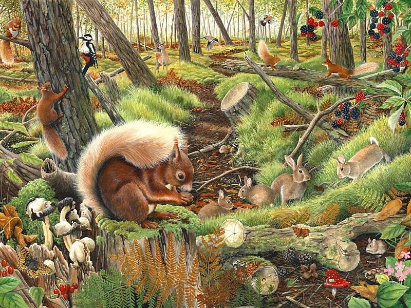 Пазл Собирать пазлы онлайн - В лесу