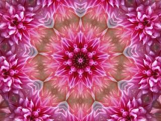 Собирать пазл В розовом цвете онлайн