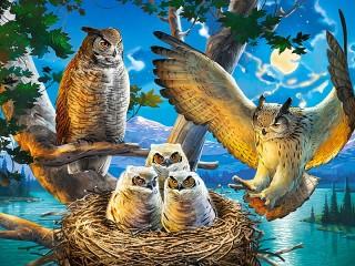 Собирать пазл В совином гнезде онлайн