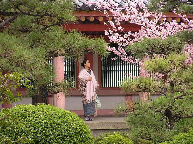 Пазл Собирать пазлы онлайн - В японском саду