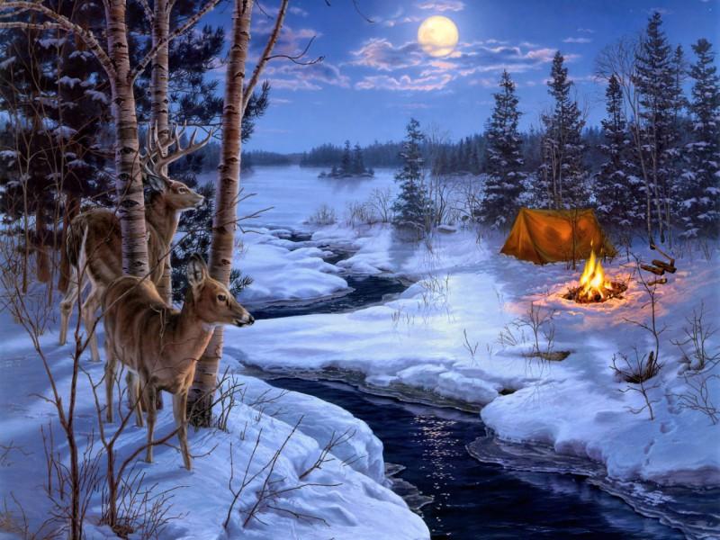 Пазл Собирать пазлы онлайн - В зимнем лесу