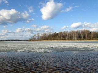 Собирать пазл Весна на озере Сенеж онлайн