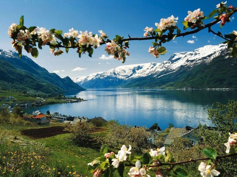 Пазл Собирать пазлы онлайн - Весна в горах