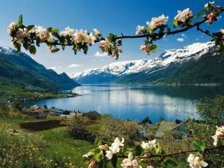Собирать пазл Весна в горах онлайн