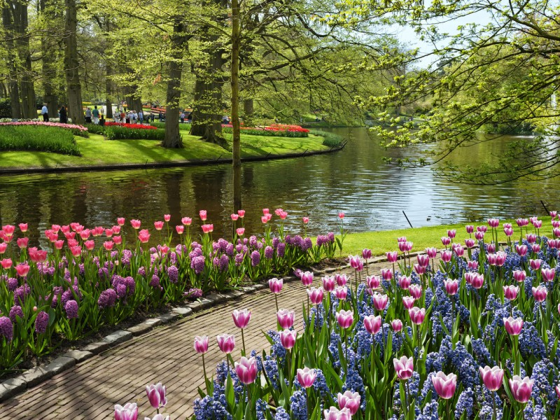 Пазл Весна в парке