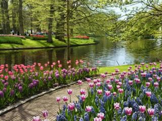 Собирать пазл Весна в парке онлайн
