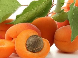 Собирать пазл Ветка витаминов онлайн