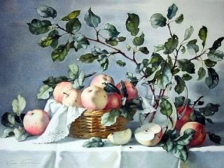 Собирать пазл Ветки и яблоки онлайн