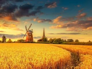 Собирать пазл Ветряная мельница онлайн