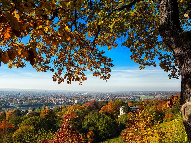 Пазл Собирать пазлы онлайн - Вид на Дрезден