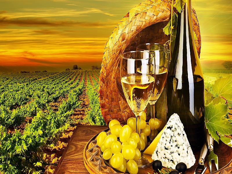Пазл Собирать пазлы онлайн - Вино возле плантации