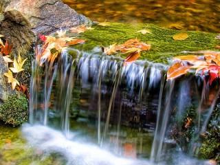 Собирать пазл Водопад осенью онлайн