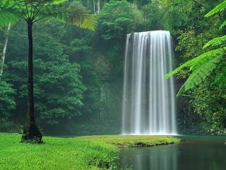 Собирать пазл Водопад в лесу онлайн