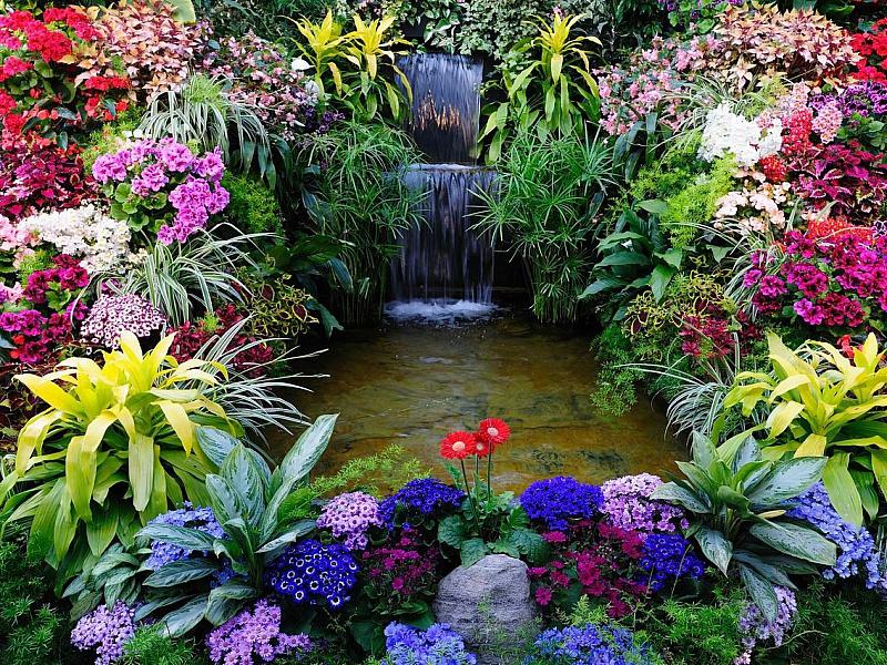 Пазл Собирать пазлы онлайн - Водопадик в цветах