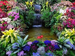 Собирать пазл Водопадик в цветах онлайн