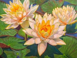 Собирать пазл Водяные лилии онлайн
