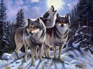 Собирать пазл Волчий зов онлайн