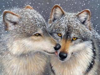 Собирать пазл Волчья нежность онлайн