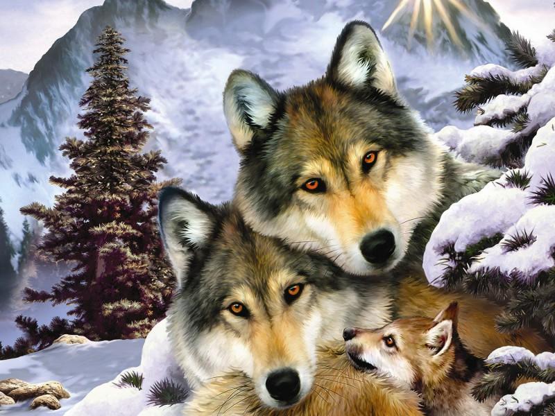 Пазл Волчья семья