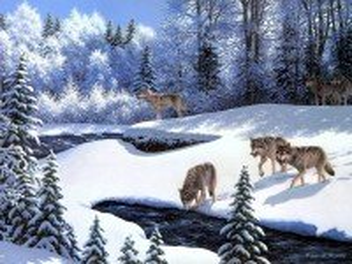 Собирать пазл Волчья стая онлайн