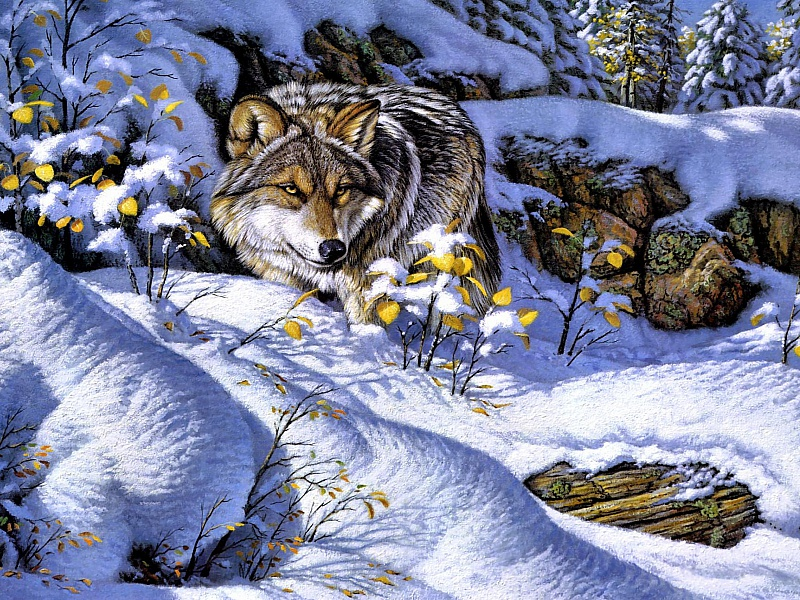 Пазл Собирать пазлы онлайн - Волк на охоте