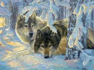 Собирать пазл Волки онлайн