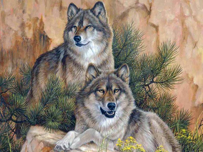 Пазл Собирать пазлы онлайн - Волки